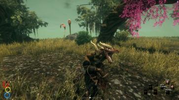Tuanosaur Fight