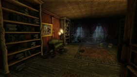 amnesia_library