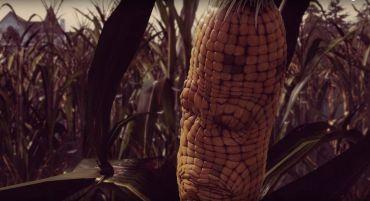 corny maize
